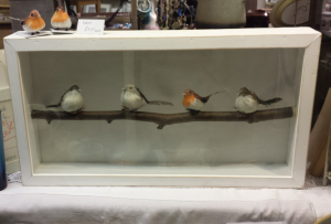 Taxidermy without the cruelty! Box frame with artificial birds.
